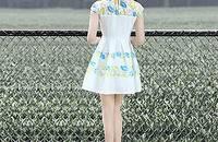 夏季姗姗原创小清新文艺短袖修身显瘦雪纺连衣裙