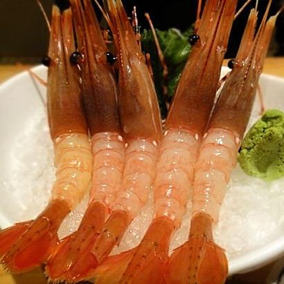 加拿大进口超大牡丹虾J号三文鱼伴侣