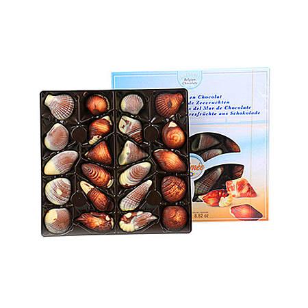 比利时进口 贝壳巧克力