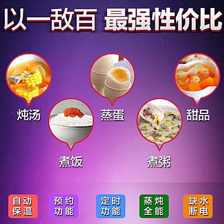 天际 隔水炖盅小电炖锅白瓷宝宝煮粥锅迷你bb煲