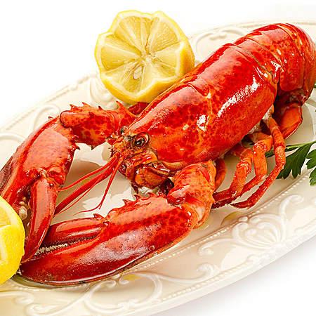 加拿大熟冻龙虾进口海鲜波士顿大龙虾冻虾海虾