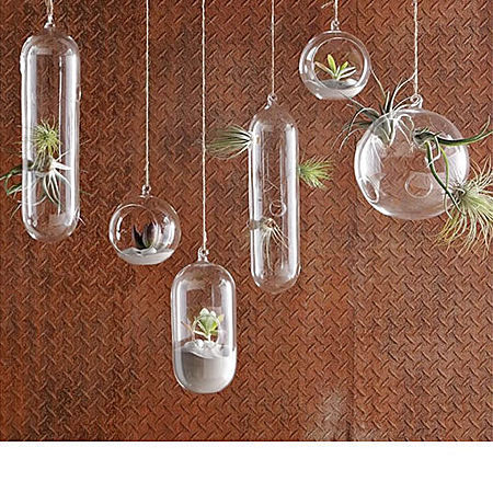悬挂空心玻璃球,水培植物,养鱼皆可